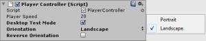 Player Controller Inspector